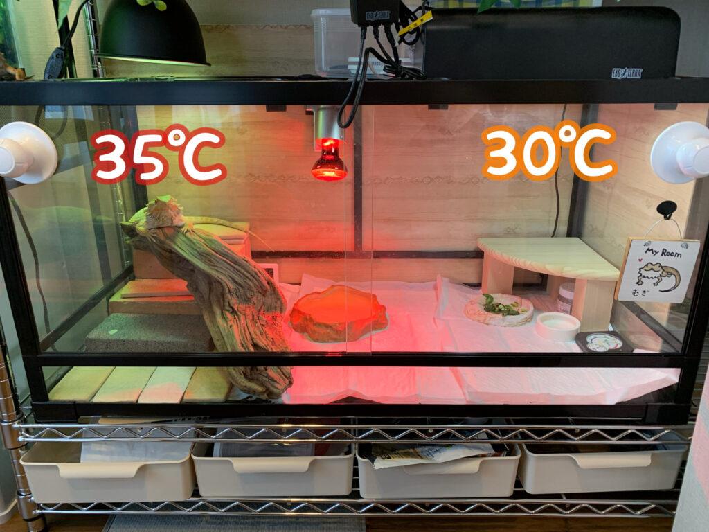 フトアゴケージの温度勾配