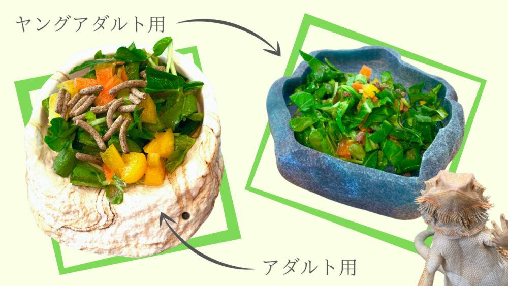 フトアゴヒゲトカゲ用の餌