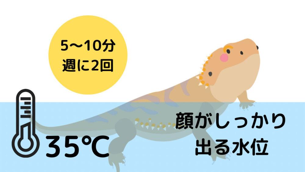 フトアゴヒゲトカゲの温浴のやり方
