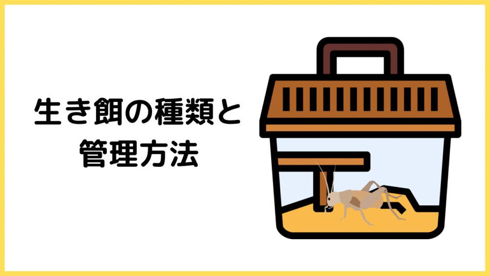 生き餌の種類と管理方法