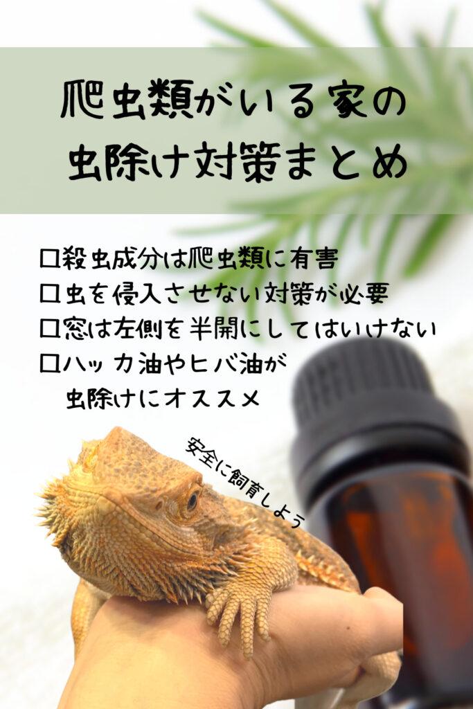 爬虫類のいる家の虫除け対策まとめ
